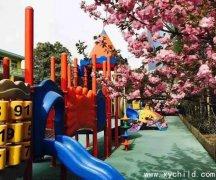 洛阳市凌宇实业发展有限公司幼儿园