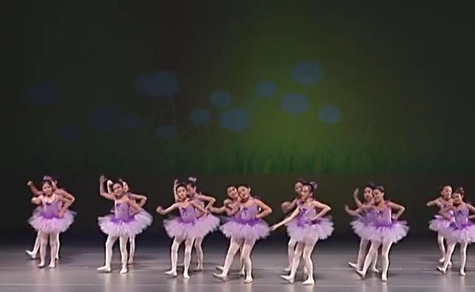 少儿舞蹈全集 第2集花仙子