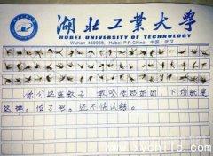 60只蚊子写作文,脑洞大开的软妹子
