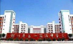 2020年河南郸城县第一高级中学高考成绩